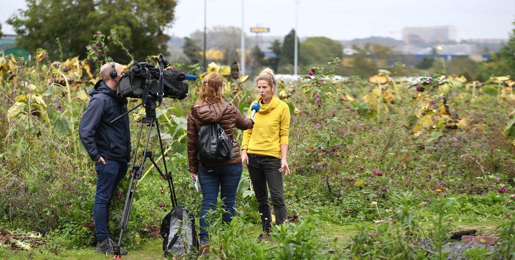 Interview (journaliste et caméraman) d'une responsable, dans un champ.