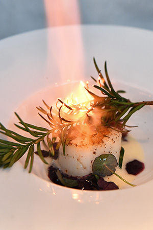 A dish of charred scallop with fragrant herbs.